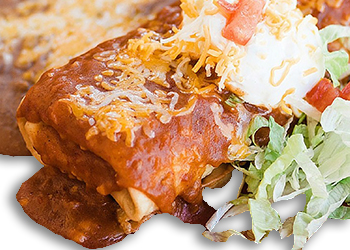 REGULAR CHIMICHANGA